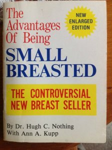 the-advantages-of-being-small-breasted-